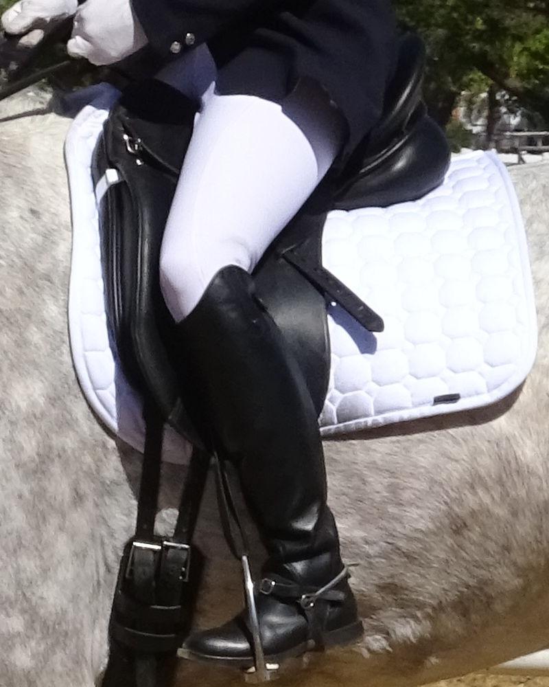 Dressage Saddle, Girth and Pad