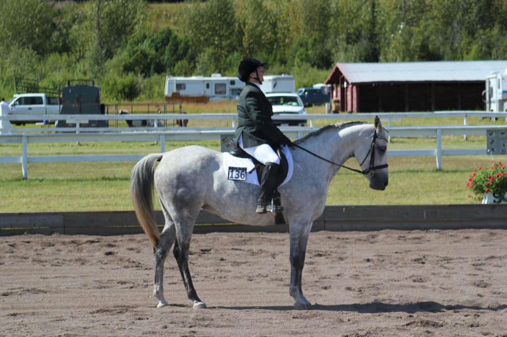 "NSC Member Kathy riding ""Spice"" in a Dressage Test"