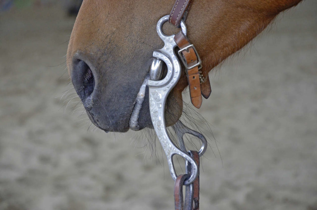 Horse Bit for Western Riding