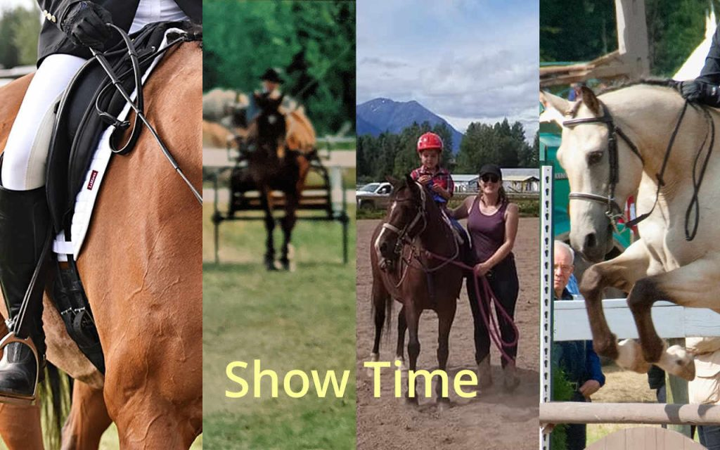 Come Join the Fun - Jumping, Western, Dressage and Driving Classes