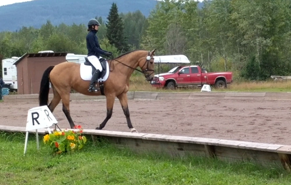 Well attended Summer Dressage Show - Aug 2020