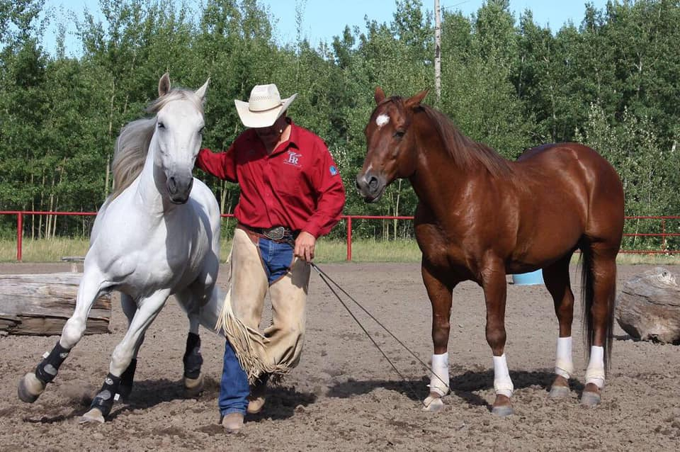 Glen Stewart Horsemanship Clinic