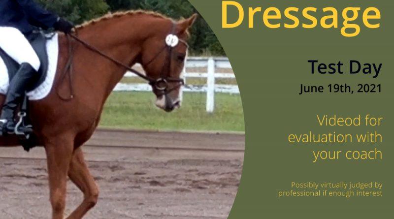 Dressage Testing Day June 19-2021